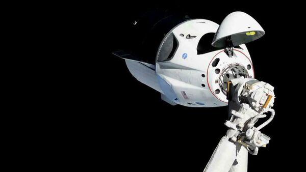Cápsula de la nave Crew Dragon - Sputnik Mundo