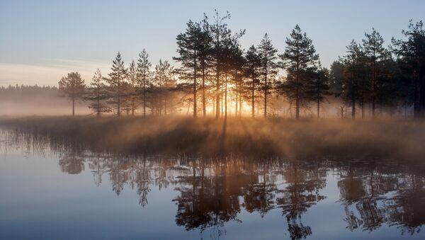 Un lago en la república de Carelia - Sputnik Mundo