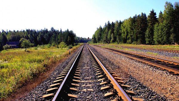 Una ferrovía - Sputnik Mundo