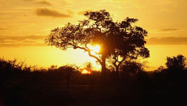 Puesta del sol en Sudáfrica - Sputnik Mundo