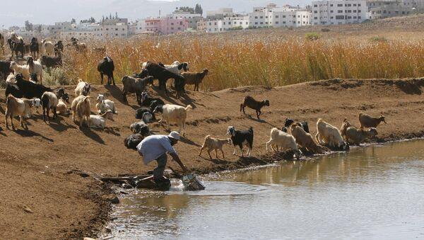 El agua, uno de los recursos más escasos del Medio Oriente - Sputnik Mundo