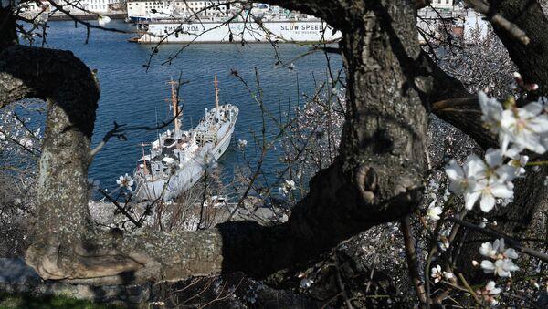 Un barco en Sebastopol, Crimea, Rusia - Sputnik Mundo