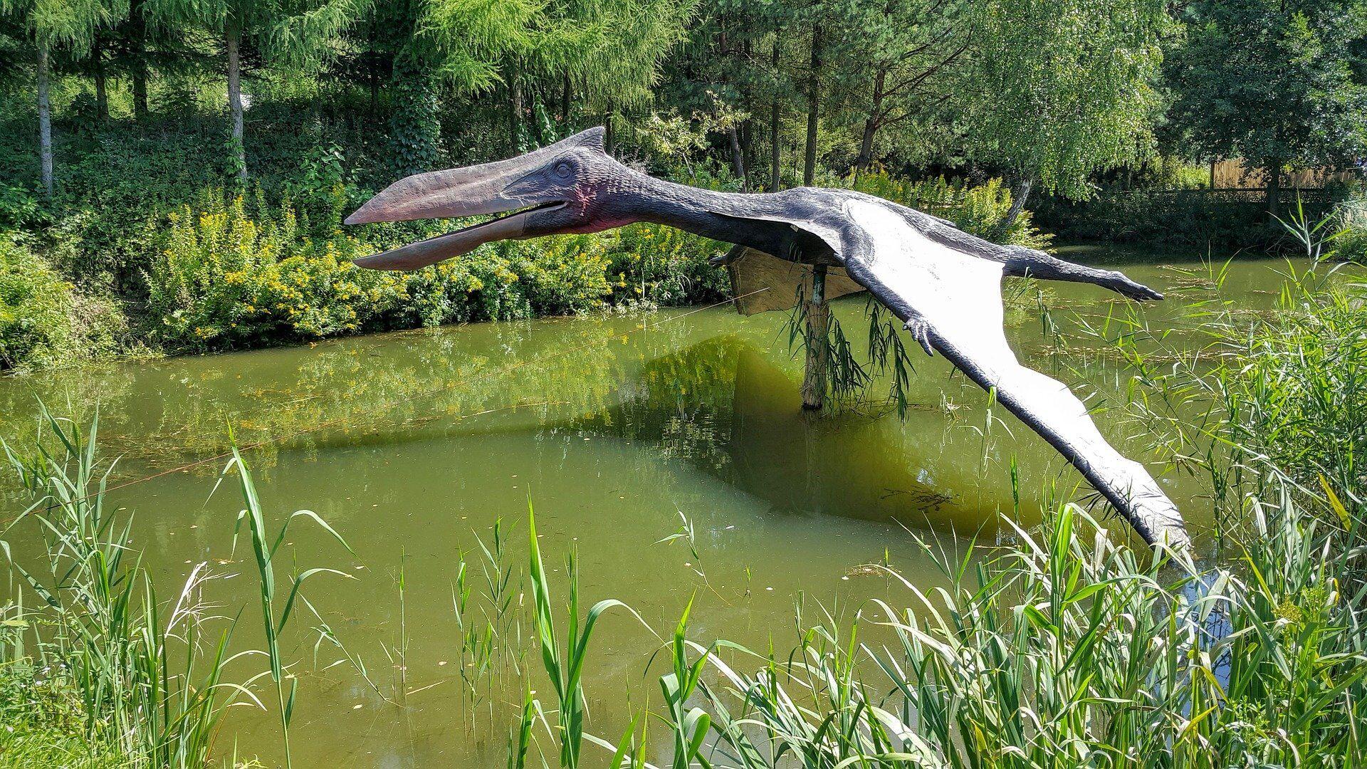 Pterosaurio - Sputnik Mundo, 1920, 23.07.2021