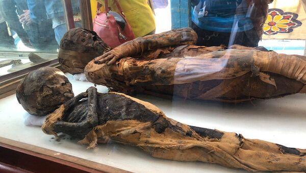 Las momias en una antigua tumba en Egipto - Sputnik Mundo