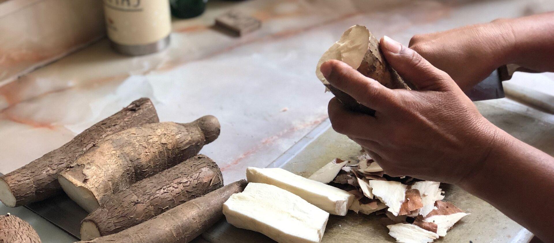 La yuca, o mandioca, es un ingrediente base en muchas cocinas de América Latina; en Venezuela ahora su consumo se ve incrementado por ser una opción nutritiva al alcance - Sputnik Mundo, 1920, 08.04.2019