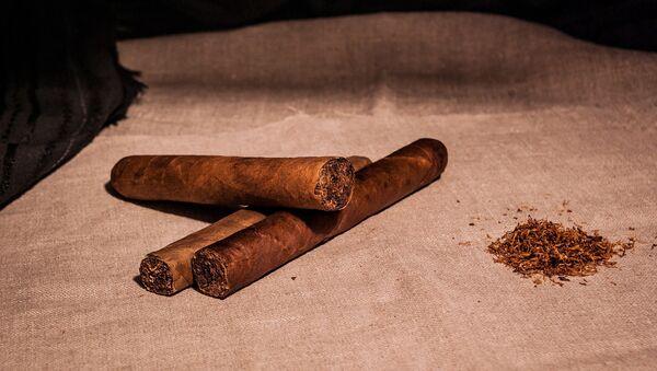 Tabaco, habano - Sputnik Mundo