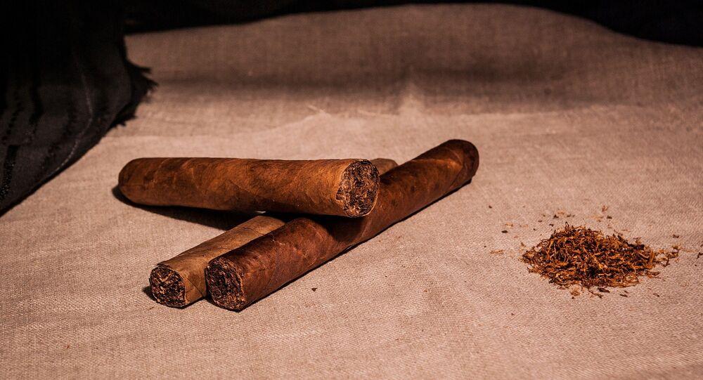 Tabaco, habano