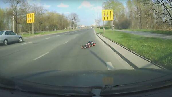 Un ciervo atropella a un motociclísta - Sputnik Mundo