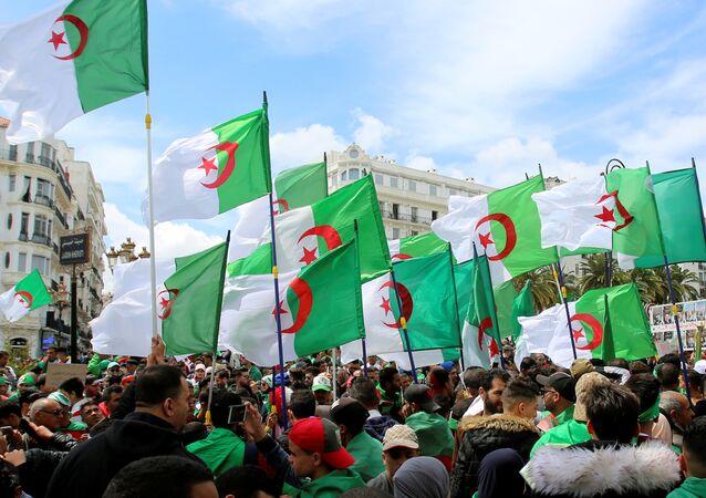 Manifestantes con banderas de Argelia
