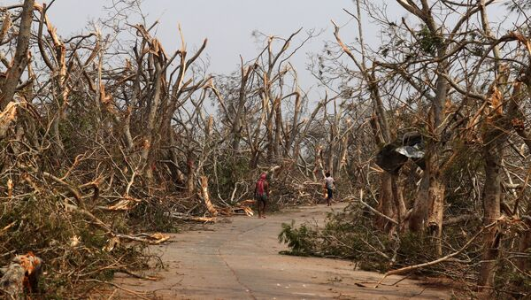 Las consecuencias del cicló Fani en el este de la India - Sputnik Mundo