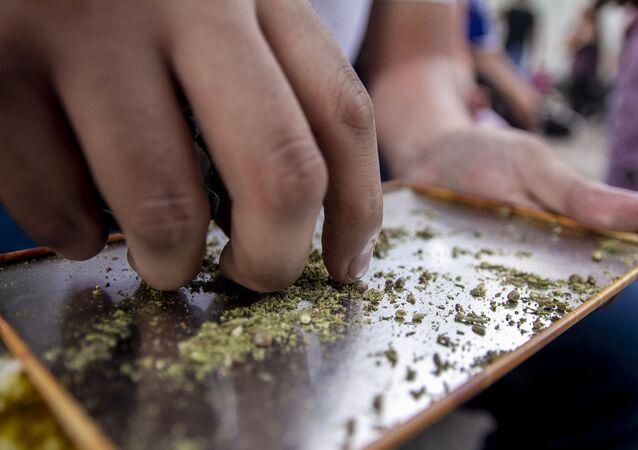 Usuario de marihuana (archivo)