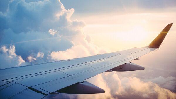 Alas de un avión (imagen referencial) - Sputnik Mundo