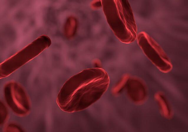 Células de sangre, referencial