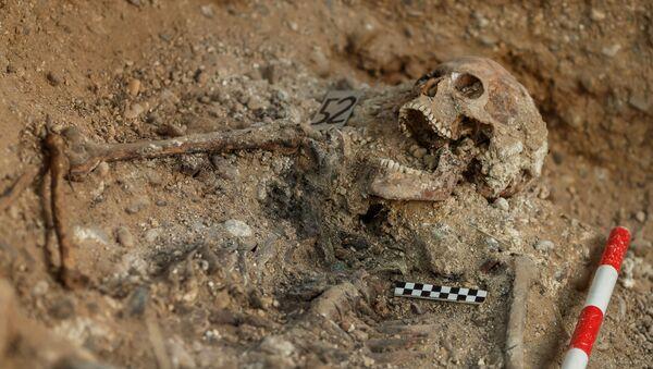 Restos humanos que encontró la Asociación para la Recuperación de la Memoria Histórica en Valladolid, España - Sputnik Mundo