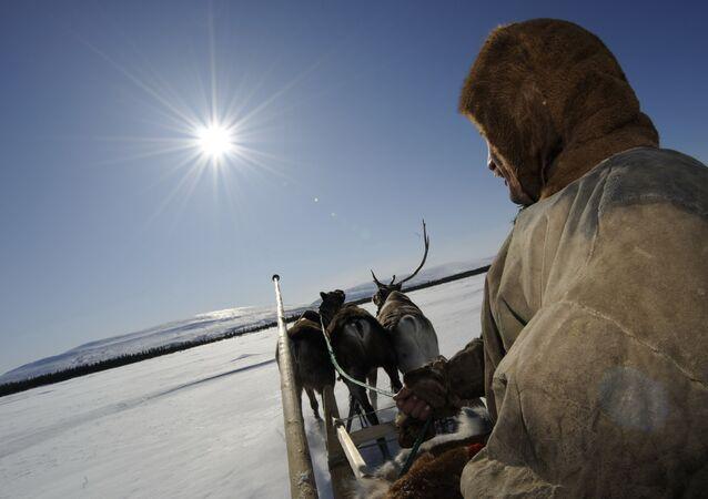 Fiesta de los pueblos del norte de Rusia en el Día del criador de renos