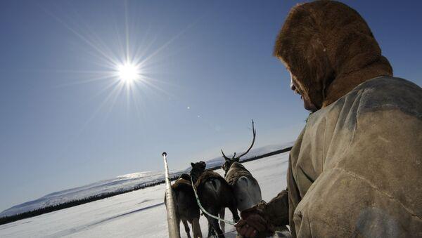 Fiesta de los pueblos del norte de Rusia en el Día del criador de renos - Sputnik Mundo