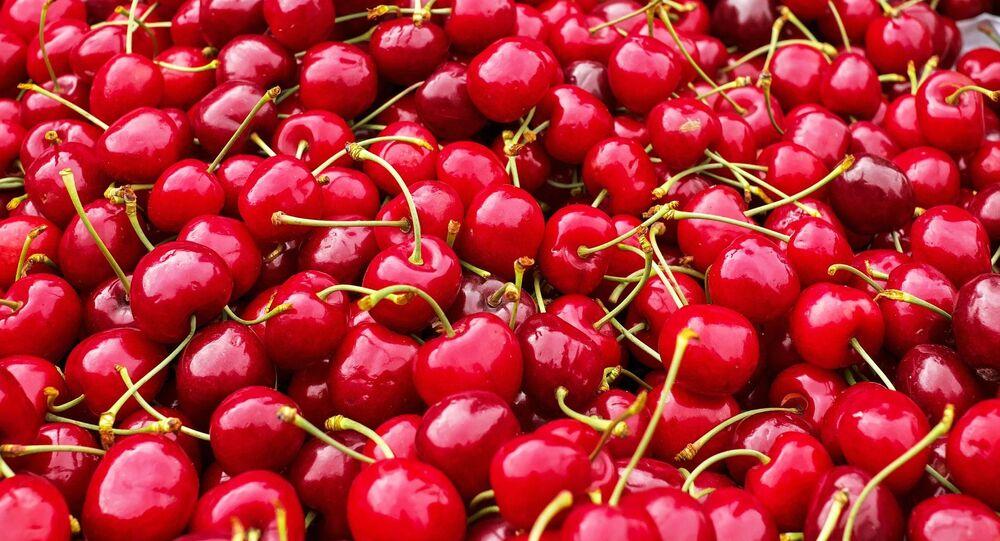 Cerezas (imagen referencial)