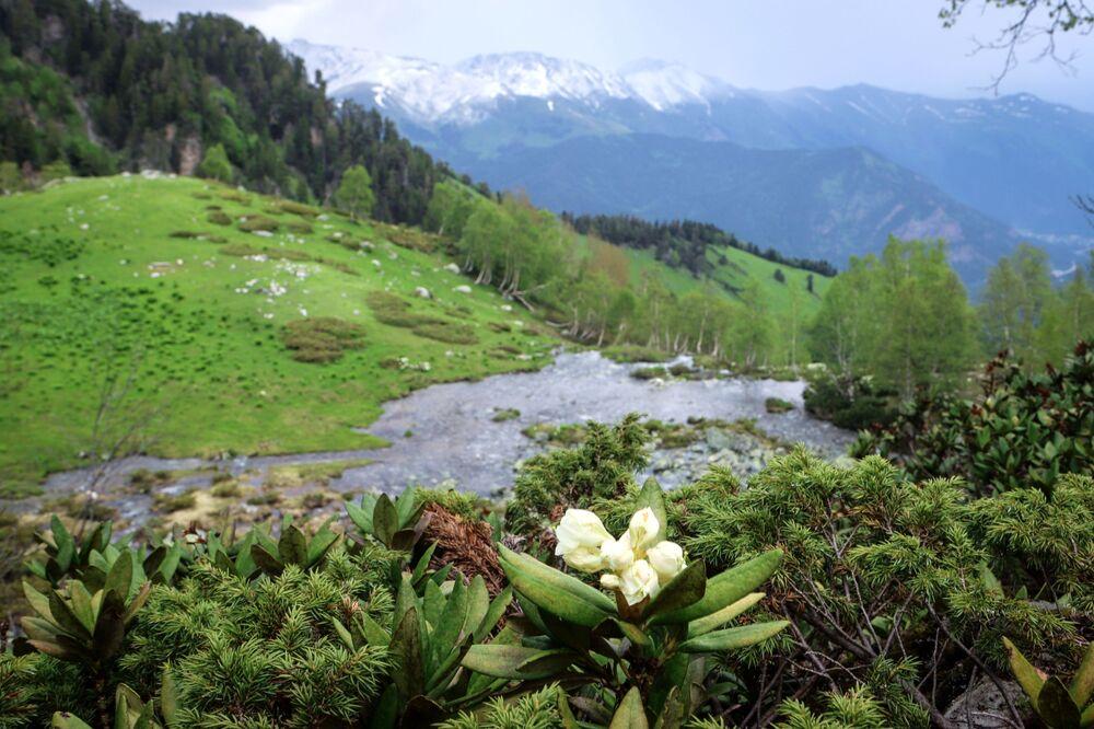 Viaje por el Cáucaso ruso: áreas recónditas del valle de Sofía