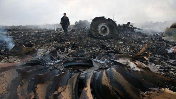 Siniestro del avión de Malaysia Airlines Boeing 777 (archivo) - Sputnik Mundo