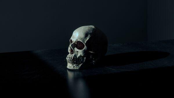 Un cráneo humano (imagen referencial) - Sputnik Mundo