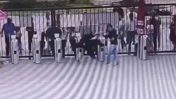 Un chimpancé siembra el pánico entre los visitantes de un zoo - Sputnik Mundo