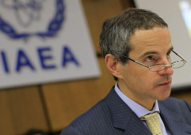 Rafael Grossi, diplomático argentino