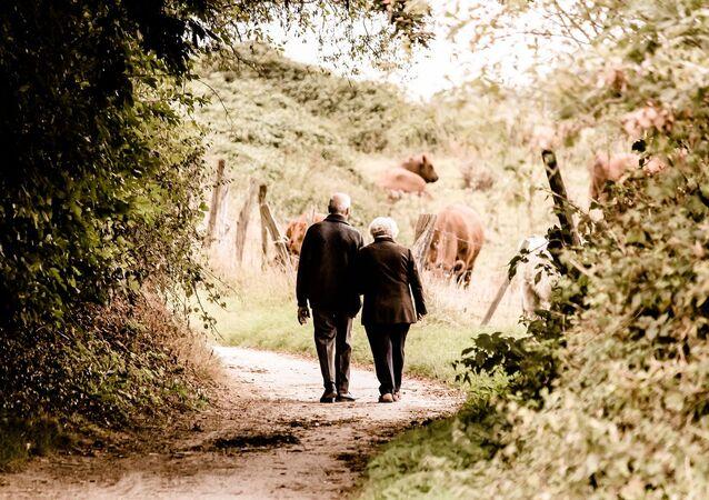 Adultos mayores (imagen referencial)