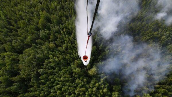 Lucha contra incendios forestales en Rusia (archivo) - Sputnik Mundo