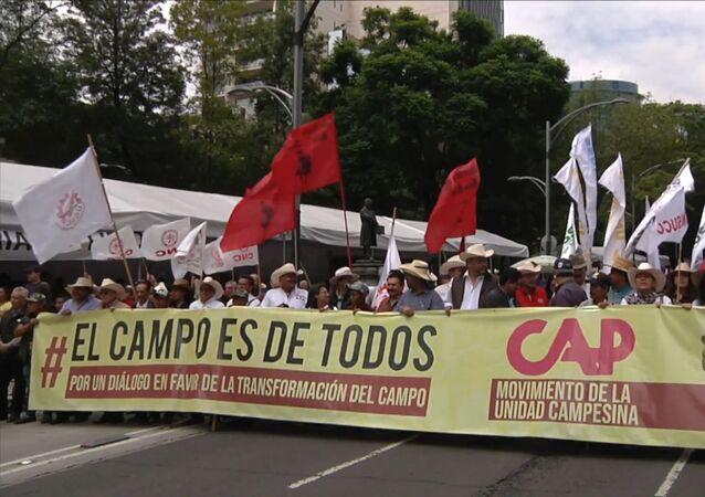 Los campesinos mexicanos salen a las calles para exigir cambios: Estamos abandonados