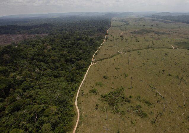 Una área deforestada en la Amazonía brasileña