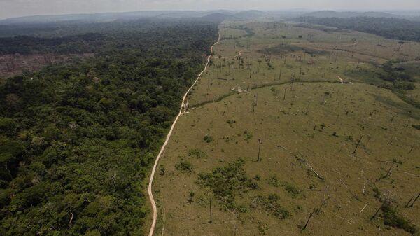 Una área deforestada en la Amazonía brasileña - Sputnik Mundo