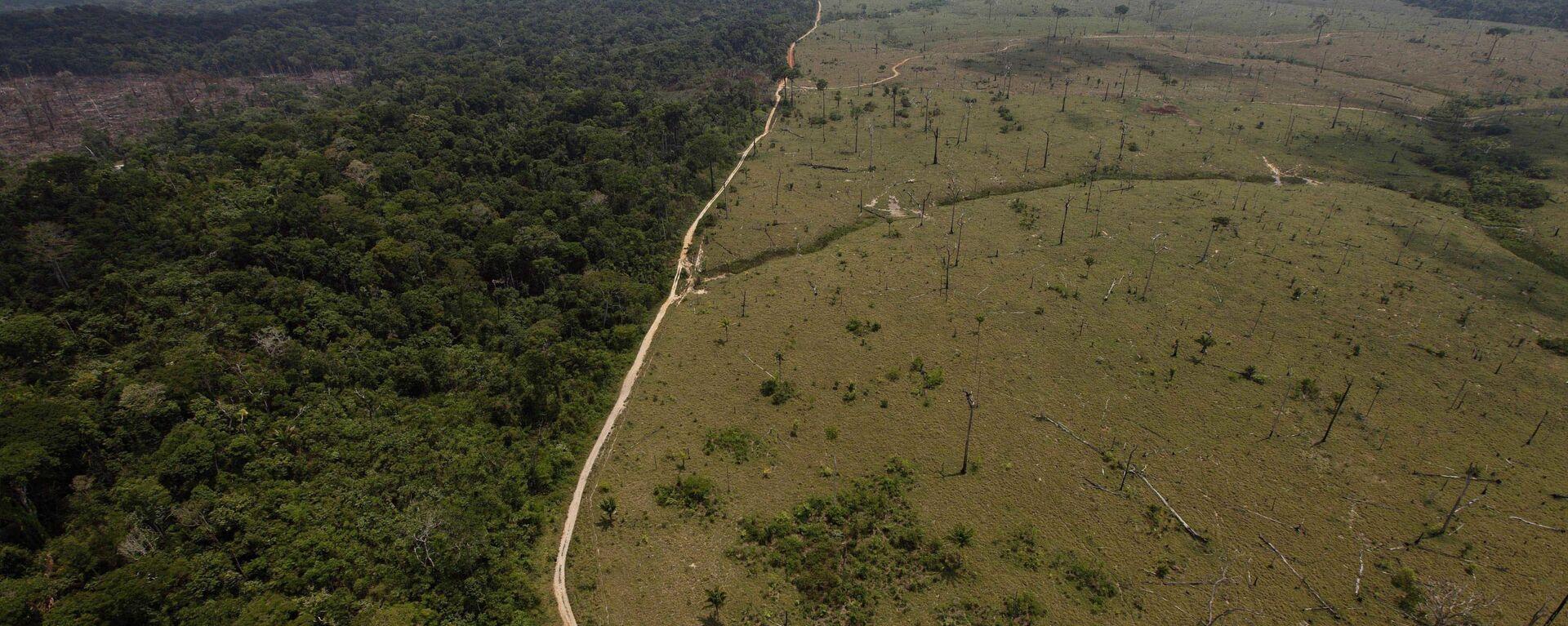 Una área deforestada en la Amazonía brasileña - Sputnik Mundo, 1920, 17.05.2021