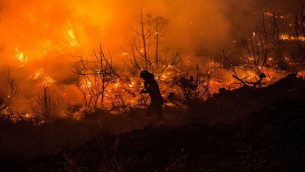 Los incendios en la isla griega de Eubea - Sputnik Mundo