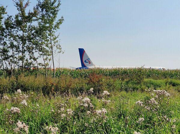 Heroicos pilotos realizan un aterrizaje de emergencia con un avión de pasajeros cerca de Moscú  - Sputnik Mundo