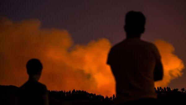 Incendio forestal en Gran Canaria, España - Sputnik Mundo