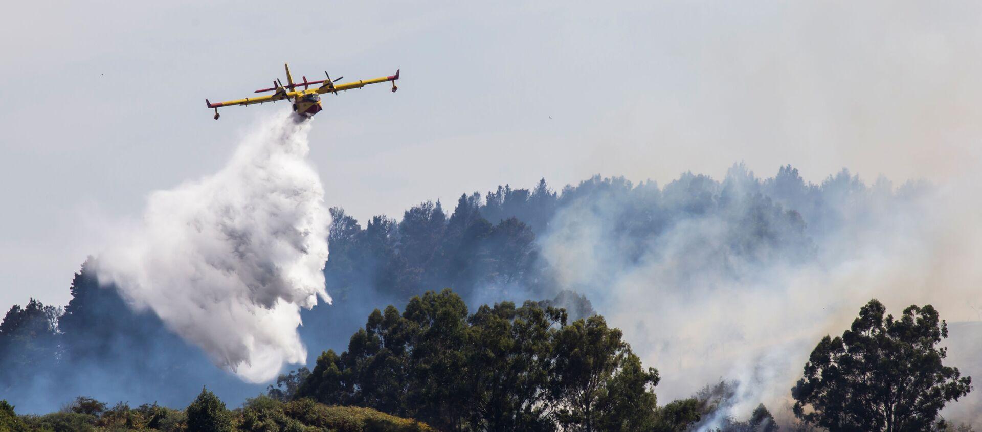 Incendio forestal en Gran Canaria, España - Sputnik Mundo, 1920, 20.08.2019