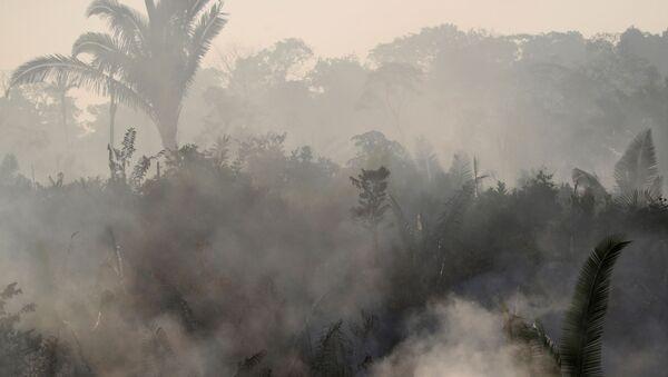 Los incendios en la Amazonía - Sputnik Mundo