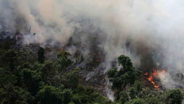 Incendio forestal (Archivo) - Sputnik Mundo