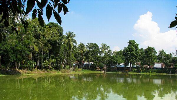 La isla fluvial Majuli, en India - Sputnik Mundo