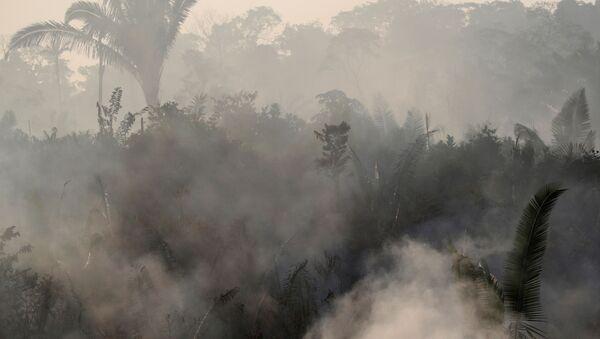 Humo causado por los incendios forestales en la Amazonía brasileña - Sputnik Mundo