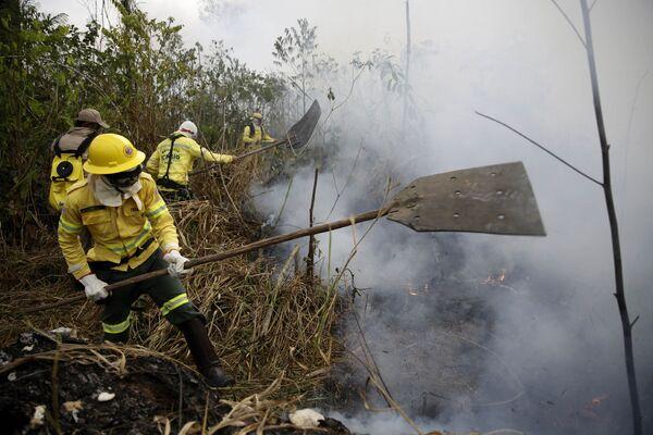Tierra cubierta de cenizas: los incendios forestales en la Amazonía - Sputnik Mundo