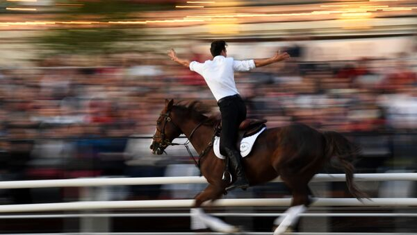 Un jinete de la Escuela de Equitación del Kremlin  - Sputnik Mundo
