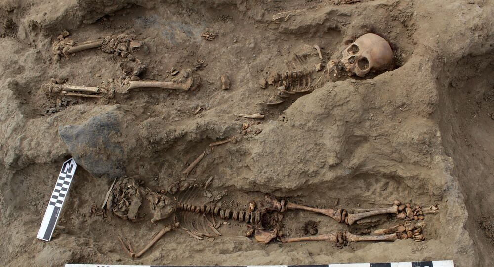 Los restos de unos 250 niños, supuestamente ofrecidos en un ritual de sacrificio por la cultura precolombina Chimú