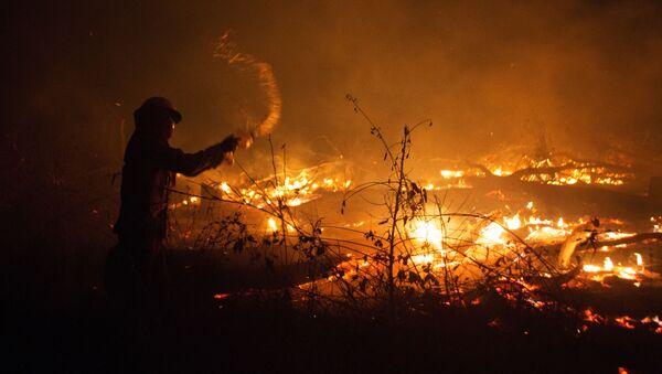 Incendios forestales en Bolivia - Sputnik Mundo