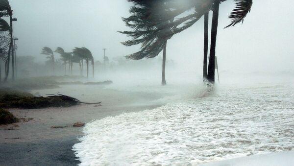 Consecuencias de un huracán (imagen referencial) - Sputnik Mundo