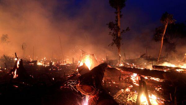 Incendios en Amazonía - Sputnik Mundo