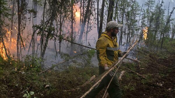 Lucha contra los incendios en bosques de Siberia - Sputnik Mundo
