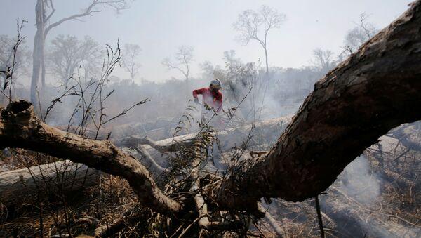 Un bombero en los incendios forestales en Bolivia - Sputnik Mundo