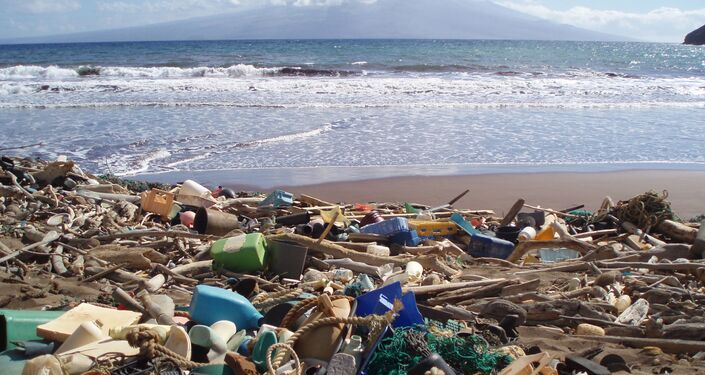 Muestra Out to Sea? The Plastic Garbage Project