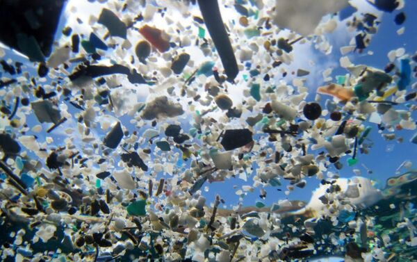 Muestra Out to Sea? The Plastic Garbage Project - Sputnik Mundo